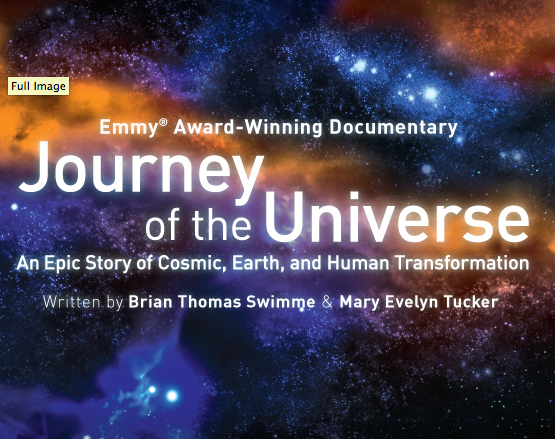 i am the universe essay Disclaimer: free essays on science posted on this site were donated by anonymous users and are provided for informational use only the free science research paper (the age of the universe essay) presented on this page should not be viewed as a sample of our on-line writing service.
